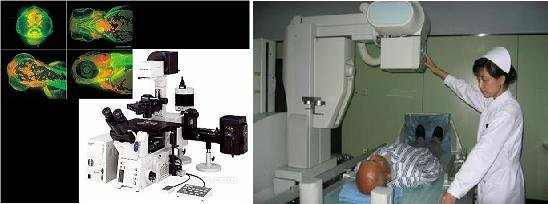 3D净血细胞祛癣疗法解析
